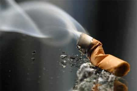 The role of nicotine